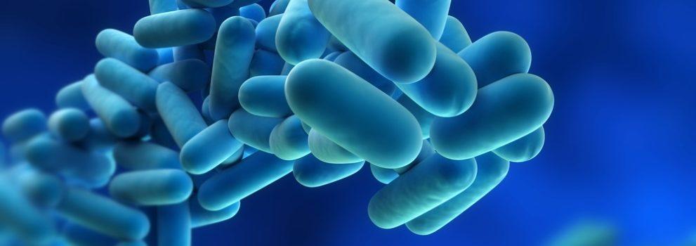 Legionella-zwalczanie śmiercionośnej bakterii
